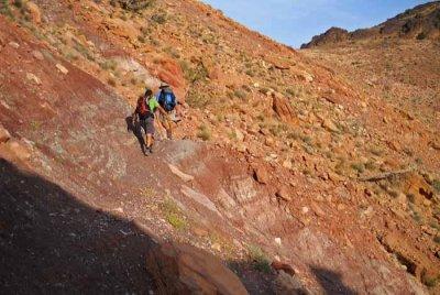 13D12N Dana to Petra Trek with Wadi Rum
