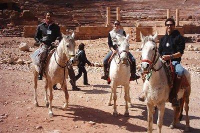 Arabian Horses Knights